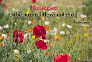 Happiness Thoughts-Quotes-Phillips Brooks-Natural Flower-Best Quotes