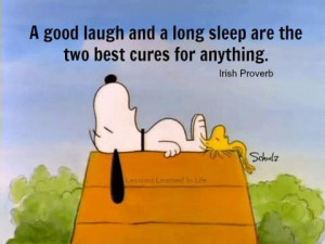 good laugh and a long sleep are the two best cures for anything.