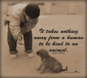 it takes nothing away from a human to be kind to an animal