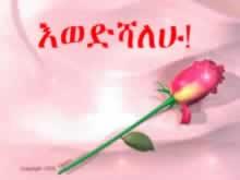 Amharic Poems