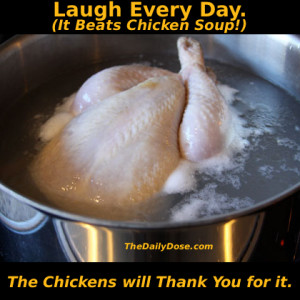 Laugh a Little. It beats Chicken Soup. TheDailyDose.com . The Chickens ...