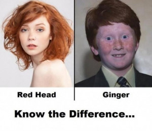 Redhead Vs Ginger