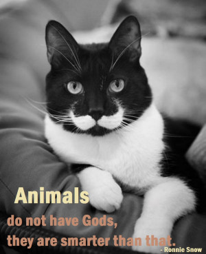 posted in animals quotes and sayings no comments january 14th 2014