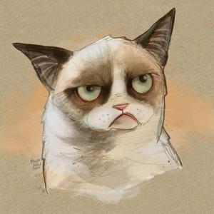 Tard, the grumpy cat