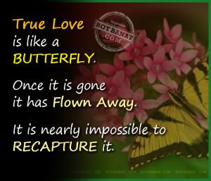 True love is like a butterfly. Once it is gone it has flown away and ...