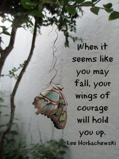 When it seems like you may fall, your wings of courage will hold you ...