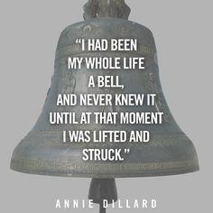 Annie Dillard Quotes More