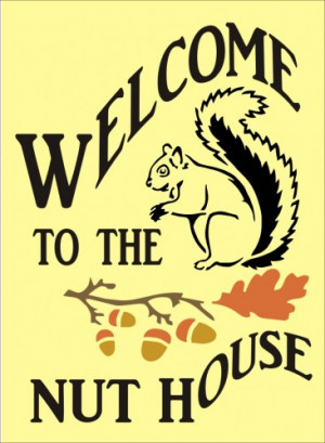 stencil welcome funny squirrel nut house acorns 9 x 12.5 inches