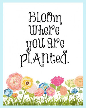 Bloom Where you are Planted 8×10 wall art inspirational flowers quote ...