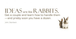 Ideas are like rabbits. You get a couple and learn how to handle them ...