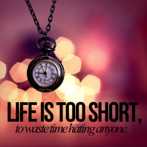 anyone, hating, life is too short, quote, text, to waste time