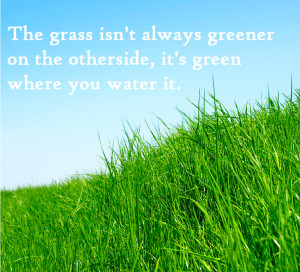 the grass is greener senn nathan create your badge search index 2014 ...