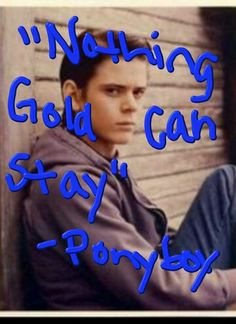 Ponyboy Curtis Quotes Quote