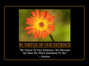 Patience Quotes and Affirmations by Eleesha [www.eleesha.com]