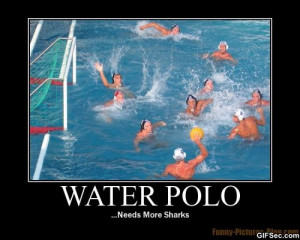 Water Polo needs more shark