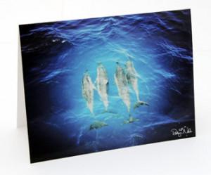 "Angels of the Sea"" 12 Hawaiian Dolphin Greeting Cards"