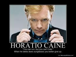 Horatio-Caine-quotes-3.jpg