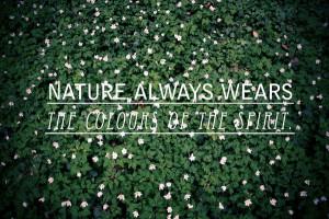 30 Most Splendid Nature Quotes
