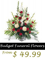 These are the great funeral quotes funny Pictures