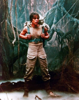 ... Luke test himself against a simulation of Vader, who tempts Luke with