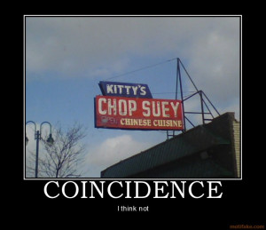 coincidence-funny-cat-chinese-food-chinese-demotivational-poster ...