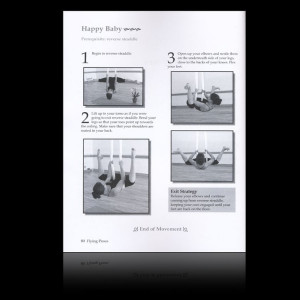 The Aerial Yoga Manual : Volume 1 Rebekah Leach (Ringbound)