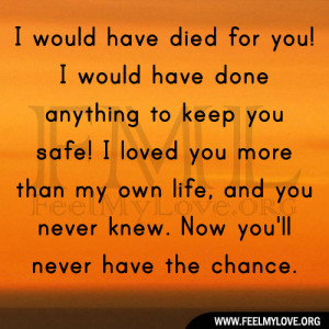 died for you! I would have done anything to keep you safe! I loved you ...