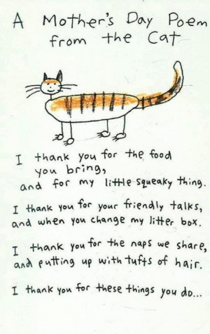 mothers-day-poem-from-cat.jpg