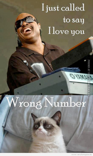 Funny Picture - Stevie wonder and grumpy cat