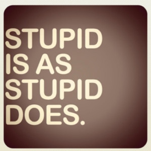 stupid is as stupid does forrest gump quotes