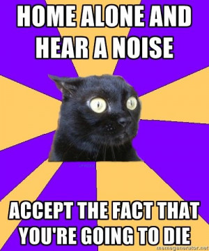 Social Anxiety Cat: me in meme form. true story