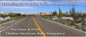 Your So Mexican Quotes Mexican insurance