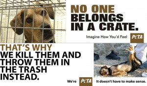 Which is more humane, crate training or killing and dumping? Which is ...