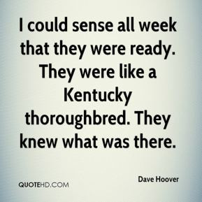 thoroughbred quotes source http www quotehd com quotes words ...