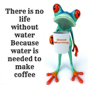 Blog Funny Save Water...