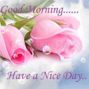 ... nice-day-pink-roses/][img]alignnone size-full wp-image-53450[/img