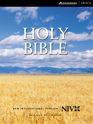 new international version bible verses