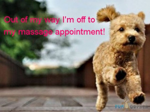 Funny Massage Picture