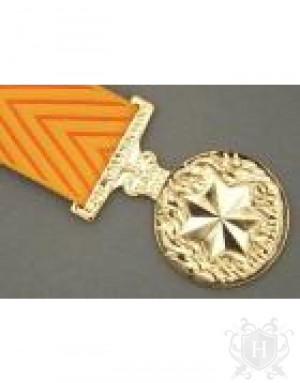 ... the australian medal for gallantry awarded for acts of gallantry