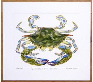 Blue Crab by Richard Bramble