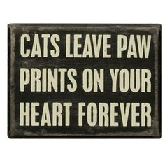 Quotes About Dogs Passing Away This is true my cat passed