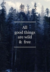 Wild & Free | forest | woods | nature | words | inspiration | good ...