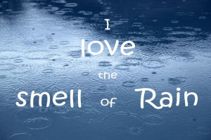 The first drops of rain always bring a smile on our faces. The smell ...