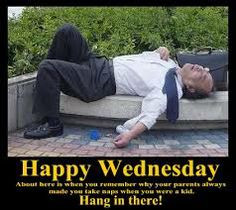 ... daily dose happy wednesday daily funny day wednesday wednesday funny