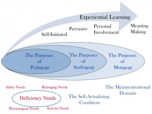 learner centered learning or our company answers here give learning ...