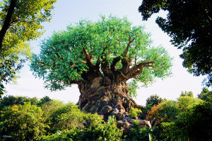 Vintage Walt Disney World: Tree of Life by Nate Rasmussen: Originally ...