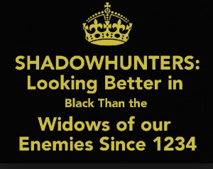 shadowhunter quote!! I THINK