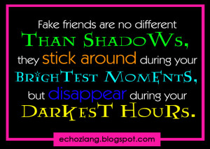 False Friends Quotes http://abook.org/fake-friends-are-no-different ...