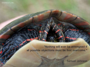 all possible objections must be first overcome.