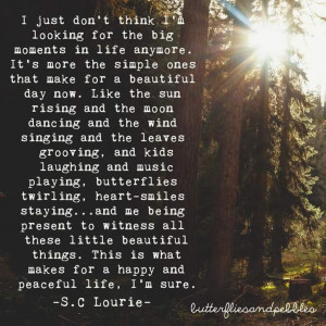 ... -for-the-big-moments-in-life-sc-lourie-quotes-sayings-pictures.jpg